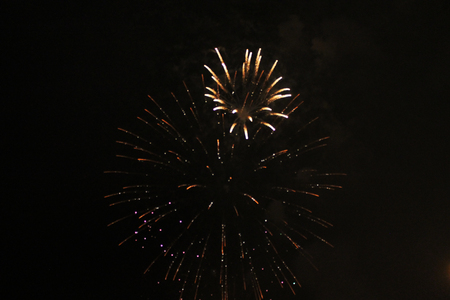 Starry flower of bright yellow and green firework lights. during Halloween, Christmas, Independence Day, New Year.
