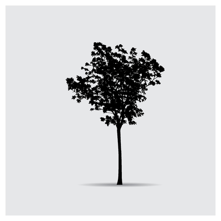 large tree: Vector tree silhouettes