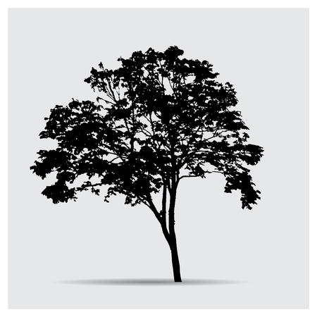 big tree: Vector tree silhouettes