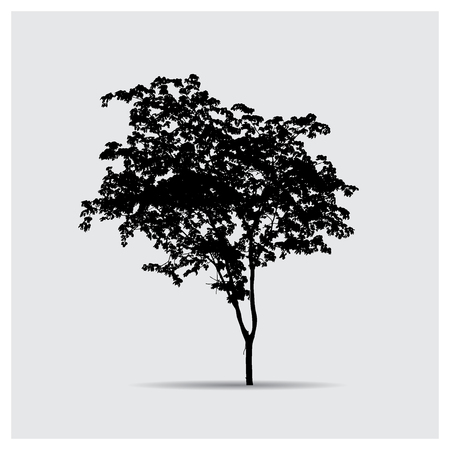 tree silhouettes: Vector tree silhouettes