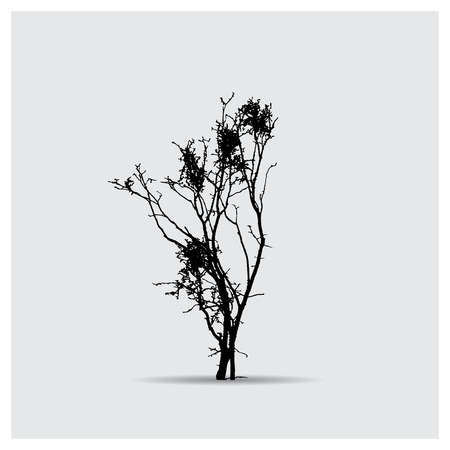 silhouettes: Vector tree silhouettes