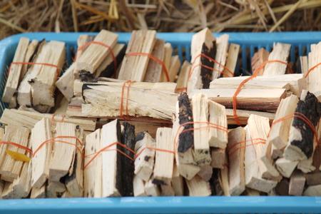nontoxic: Thailand herbs
