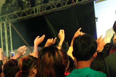 crowd hands: Crowd hands