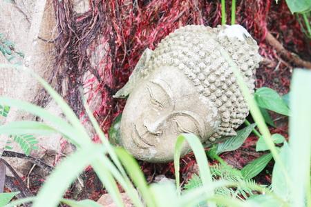 wasteful: Buddha head Stock Photo