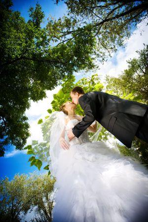 Braut und Bräutigam küssen im Park Standard-Bild - 4864845