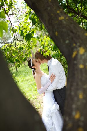 bride and groom in the park photo