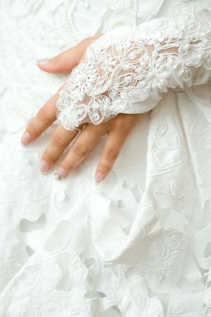 hand in glove of the bride Stock Photo - 6630421