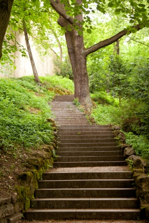 fairy garden: stone stairs in the park Stock Photo