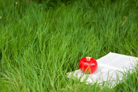 book with apple on the grass photo
