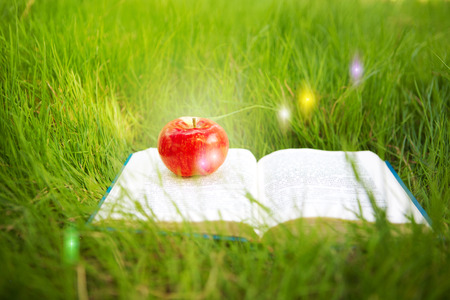 fairy book and apple photo