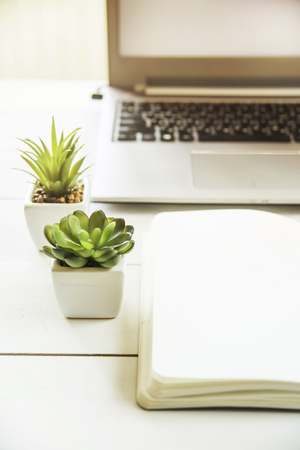 Two small pots with succulents at the computer on the desktop. Next to a white open notepad. A minimalistic stylish workplace in the sunlight Standard-Bild
