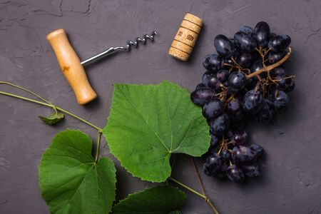The concept of wine making and finished wine from the autumn harvest. Grape leaves, corkscrew, cork and bunch of ripe grapes