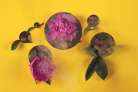 Pink summer peony flowers peep out from circles cut out in paper. 版權商用圖片 - 150380916