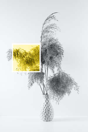 Bouquet of pampas herbs in the colors of the year 2021 yellow and gray