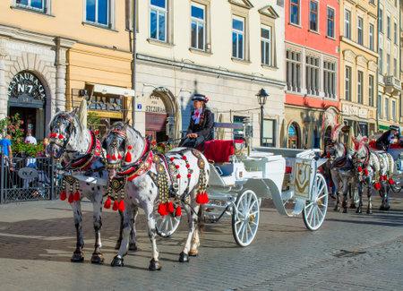 Touristic Horse Cab Banco de Imagens - 78297906