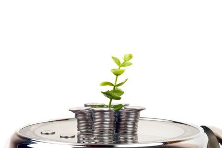 coins with plant and clock, isolated on white background. savings concept 写真素材