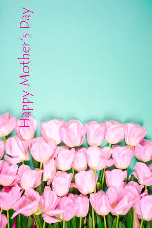 Beautiful bouquet of tulips for Mothers Day on the bright background. Reklamní fotografie