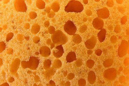 Yellow sponge texture Stock Photo - 4081666