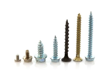 Set of diferent size screws photo