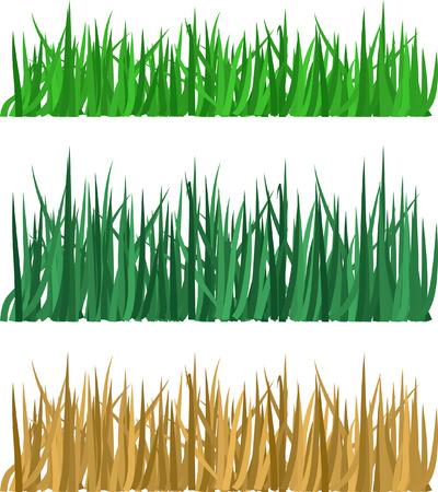 grass vector: Grass. Vector illustration