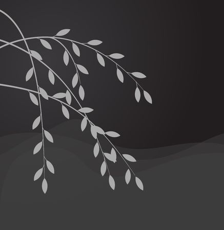 willow tree: Silhouette of willow branch