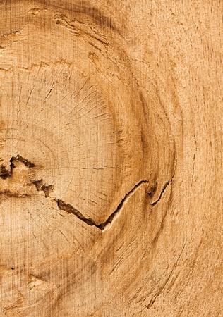 Wood texture Stock Photo - 8339260