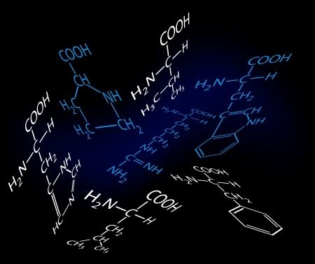 acido: 20 amino�cidos. Una base de la vida.
