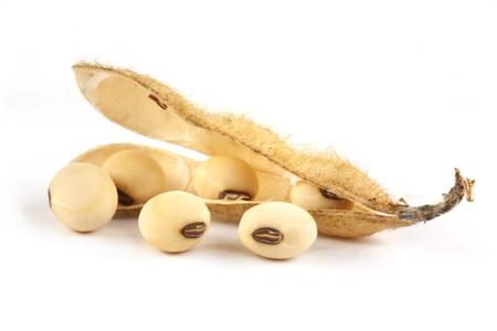 白の背景に分離大豆ポッド