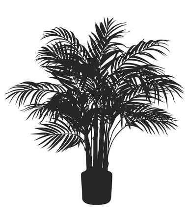cocos: Bamboo tree silhouetter. Vector illustration