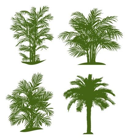 ヤシの木のシルエット。ベクトル イラスト
