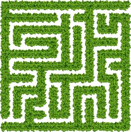 Green leaves maze Illustration