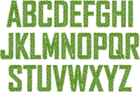 Green alphabet made from leaves Stock Vector - 17676338