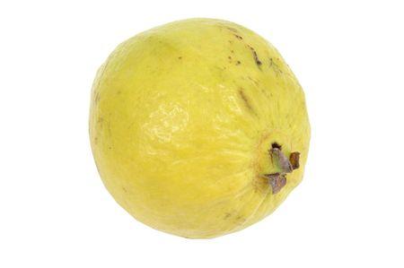 guayabo: Guayaba frutas m�s fondo blanco. .  Foto de archivo