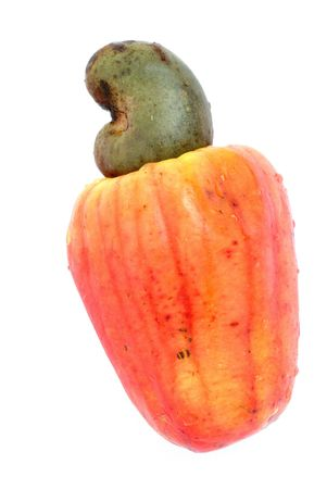 Tropical Cashew fruits on white background .