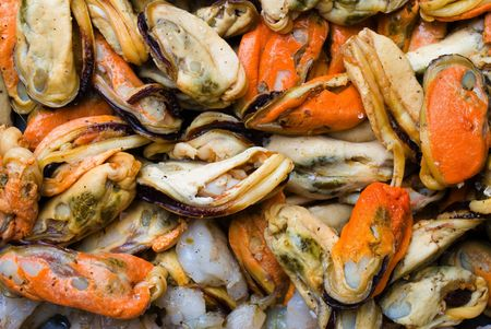 seafruit: Sea Fruits background - Raw Mussel and Shrimps .