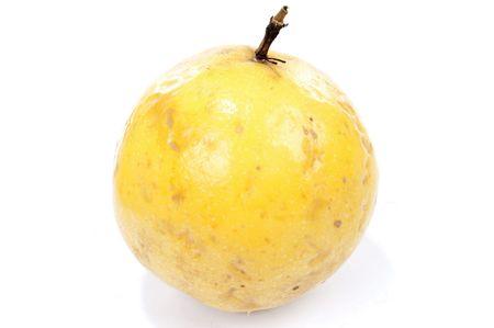 grenadilla: Organic Tropical Passion Fruit aka Maracuja .