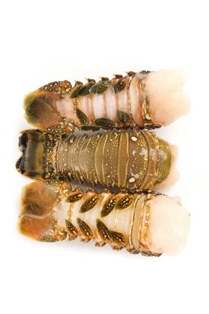 lobster tail: Raw lobster tail - Studio shot of,  Stock Photo