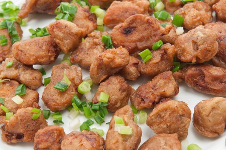 Pieces of fried breaded pork loin with green onion Stock Photo - 9169287