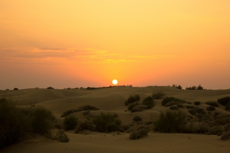 Sunset in the desert, India . photo