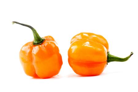 red chilli: hot peppers - Pimenta de Cheiro - Yellow Pepper . Stock Photo