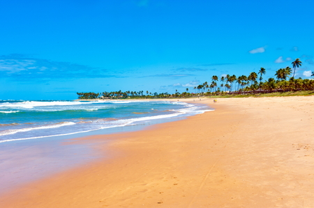 northeast: Itacimirim Beach, Bahia state, northeast of Brazil. Stock Photo