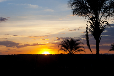 country side: Sunset at the country side of Brazil Stock Photo