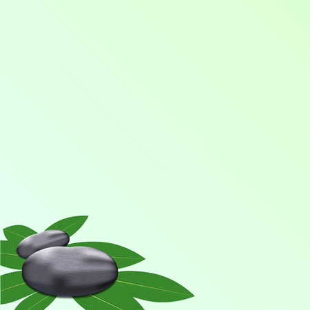 add text: spa leaves stone background to add text Illustration