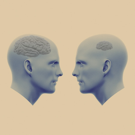 two male heads one with a large brain the other with a small. Minimalistic abstract art. Communication concepts. 3d rendering illustration 写真素材