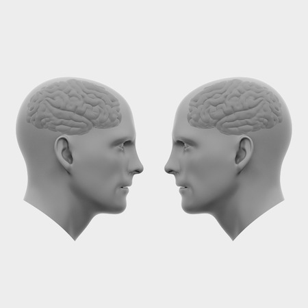 two male heads with brains facing each other. Minimalistic abstract art. Communication concepts. 3d rendering illustration