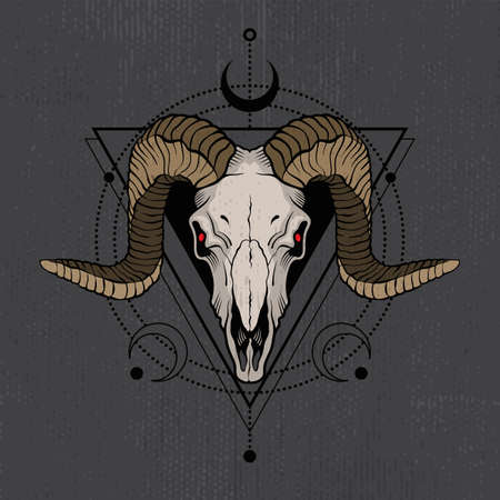Ram skull with decorative elements. Tatoo sketch or t-shirt printing. Vector illustration.