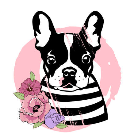 French bulldog with flowers. Cute black and white dog in a striped sweater. Vector illustration