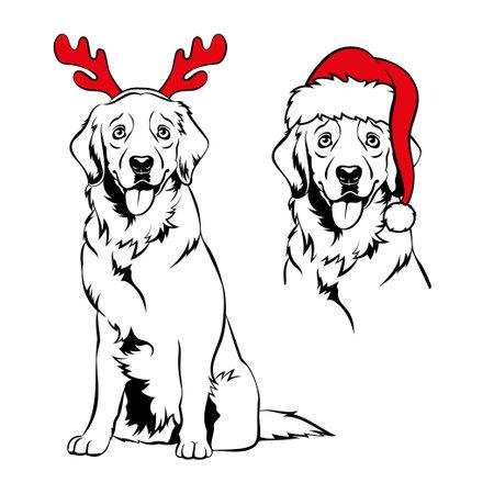 Golden retriver with red reindeer antlers and Santa hat. Christmas Labrador dog portrait. Vector illustration
