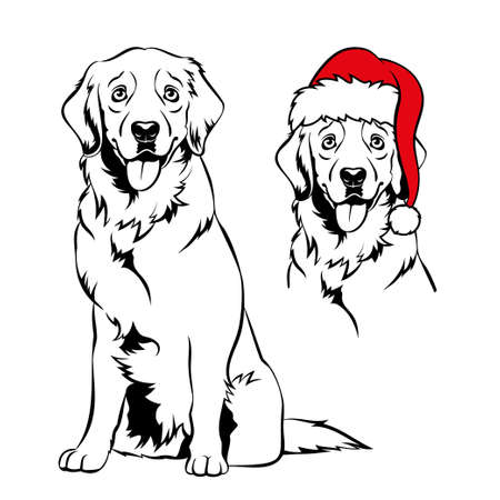 Golden retriver with Santa hat. Christmas Labrador dog portrait. Vector illustration