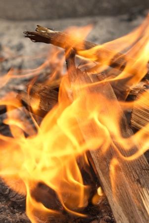 spunky: A burning fireplace, campfire Stock Photo
